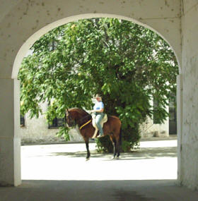 Sue riding Malabar at the Yeguada Iberica stud Tobarra Spain